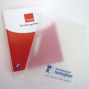 A4 Polyprop Ring Binder – 1 Colour, Stupid Tuesday